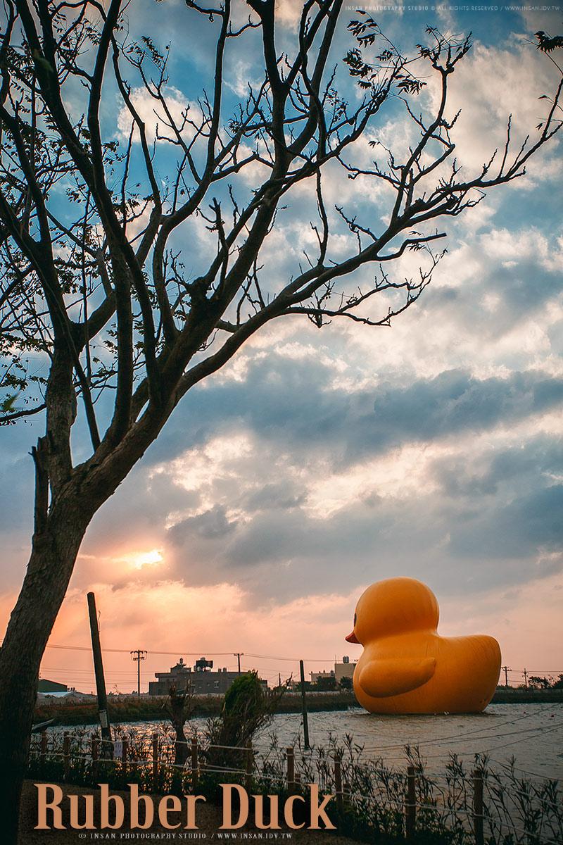 黃色小鴨 桃園新屋 婚攝英聖拍