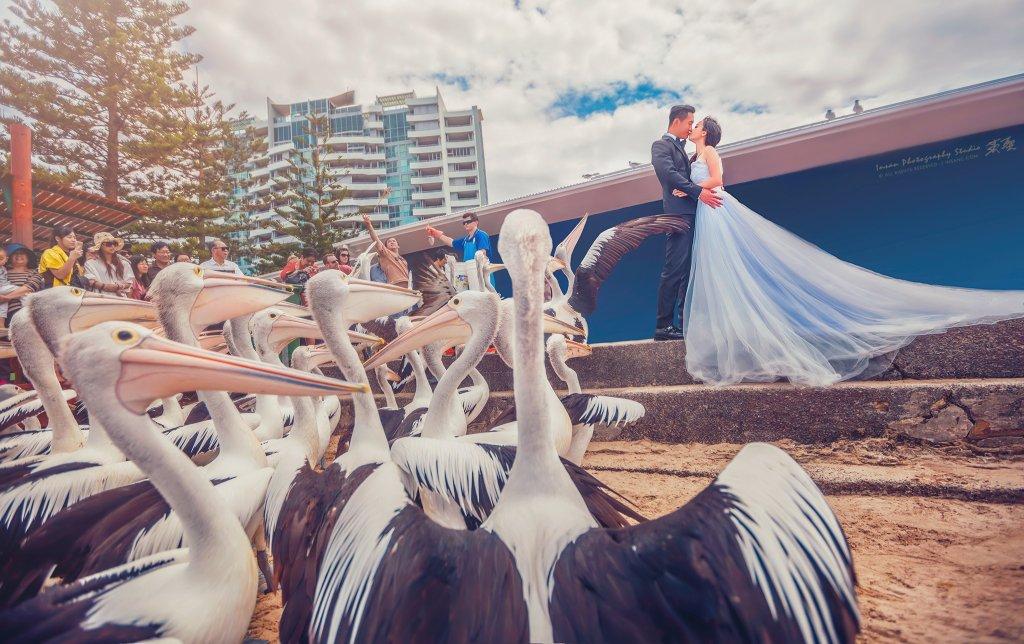 婚攝英聖海外婚紗-澳洲-黃金海岸-送子鳥婚紗-1920